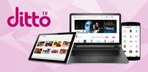 ditto tv software free download for laptop