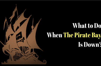 The Pirate Bay: Download All Media Content You Like